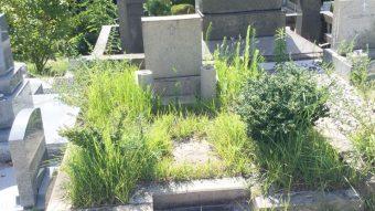 神戸市舞子墓園でお墓じまい
